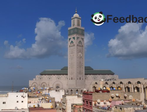 Medinas and the Mediterranean: A Moroccan Adventure